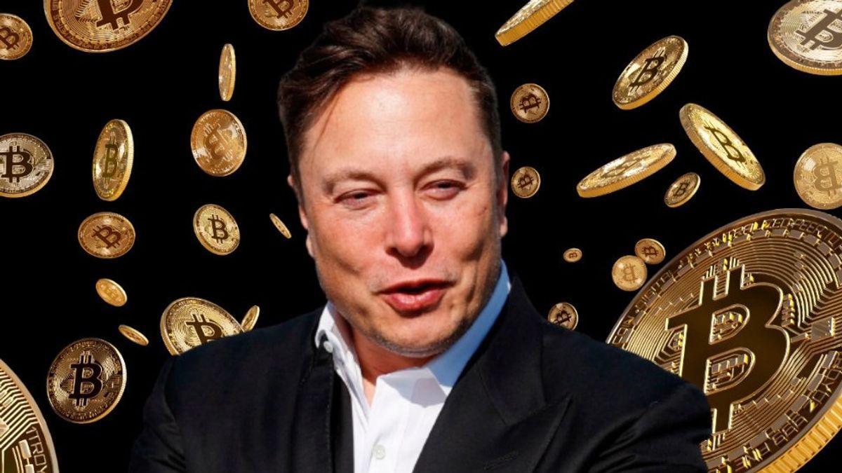 bitcoin aussie system elon musk